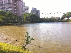 Danau dan santai